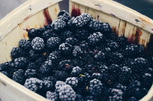 blackberries-pexels-photo-177615