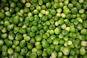 brussels-sprouts-jpeg